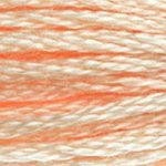 Colour 951 of DMC cross stitch floss which is Tawny Light